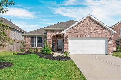 Baytown Single Family Home For Sale: 82 Rio Grande Drive Street