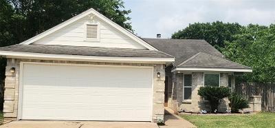 Katy Single Family Home For Sale: 20502 Blue Beech Drive