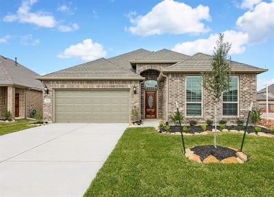 Missouri City Single Family Home For Sale: 3642 Diamond Creek Drive