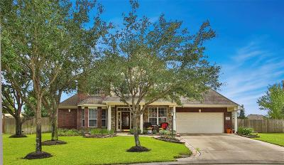 Tomball Single Family Home For Sale: 12511 Leeside Court