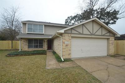 Fort Bend County Single Family Home For Sale: 16235 Sierra Grande Drive
