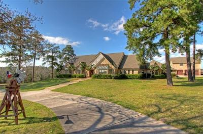 Conroe Single Family Home For Sale: 10436 League Line Road
