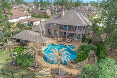 The Woodlands Single Family Home For Sale: 11 Shimmering Aspen Drive