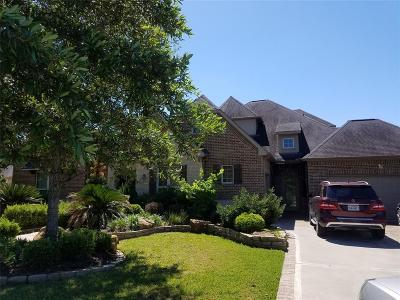 Katy Single Family Home For Sale: 28211 N Firethorne Road
