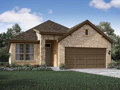 Pearland Single Family Home For Sale: 1989 Shim Ball Way