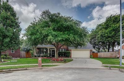Tomball Single Family Home For Sale: 11823 Newlands Court