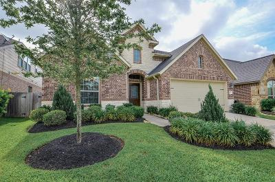 Katy Single Family Home For Sale: 2819 Weldons Forest Drive
