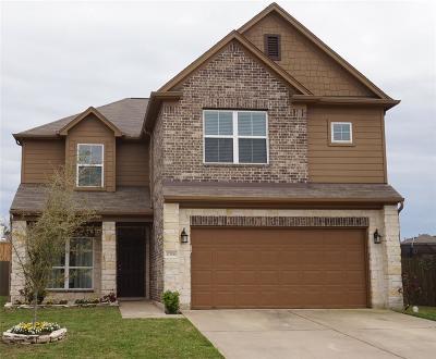 Houston Single Family Home For Sale: 12506 Kings Pond Court