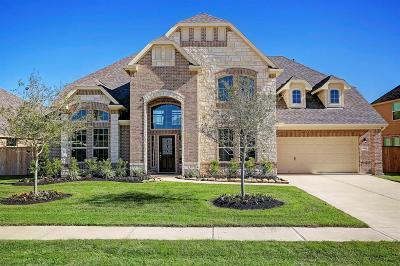 League City Single Family Home For Sale: 2322 Ashley Falls Lane
