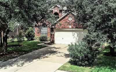Houston Single Family Home For Sale: 9526 Willow Trace Court