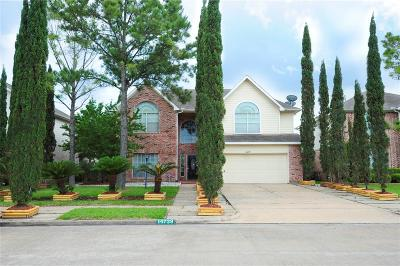 Houston Single Family Home For Sale: 14739 Belterraza Drive