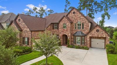 Atascocita Single Family Home For Sale: 17511 Fisher Grove Lane