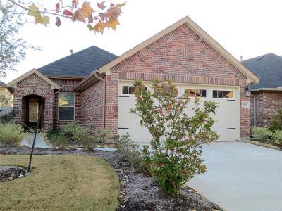 Houston Single Family Home For Sale: 1611 Oppidian Lane