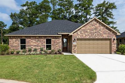 Conroe Single Family Home For Sale: 9935 S Hummingbird Court