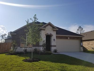 Conroe Single Family Home For Sale: 14123 Routt Forest