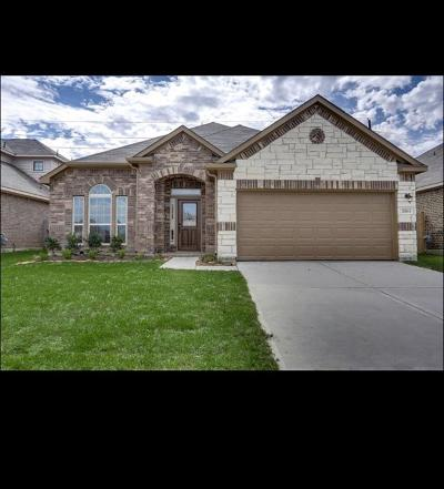 Single Family Home For Sale: 16531 Twin Walker Drive
