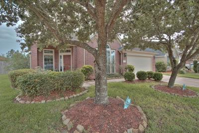 Manvel Single Family Home For Sale: 3234 Summerland Drive
