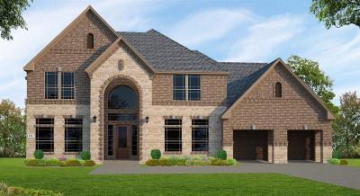 Missouri City Single Family Home For Sale: 9410 Plaza Park