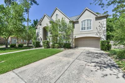 Houston Single Family Home For Sale: 15327 Climbing Branch Drive