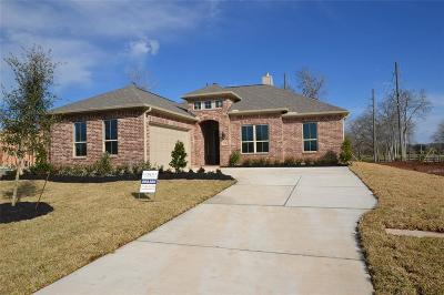 Fulshear Single Family Home For Sale: 3806 Wild Willow Way