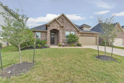 Fort Bend County Single Family Home For Sale: 107 Round Lake Drive