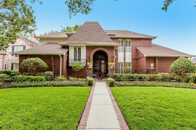 Sugar Land Single Family Home For Sale: 3702 Belle Grove Lane