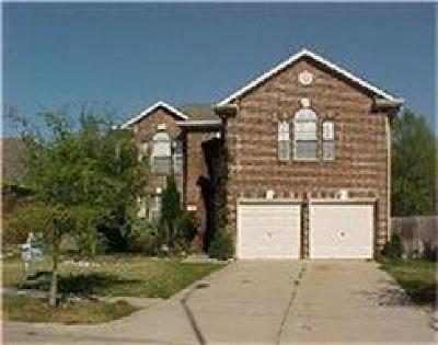 Sugar Land Single Family Home For Sale: 811 Fairpark Lane