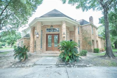 Houston Single Family Home For Sale: 3323 Ivy Falls Drive