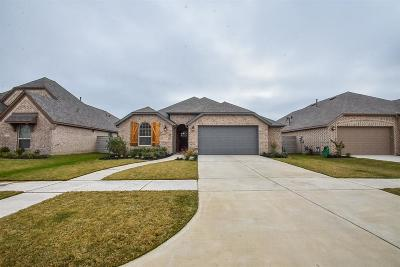 Manvel Single Family Home For Sale: 2304 Olive Forest Lane