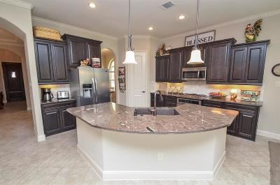 Tomball Single Family Home For Sale: 9415 Dochfour Lane