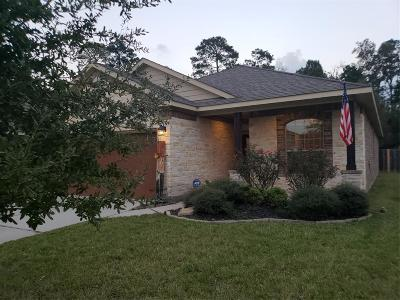 Porter Single Family Home For Sale: 22535 Range Haven Lane