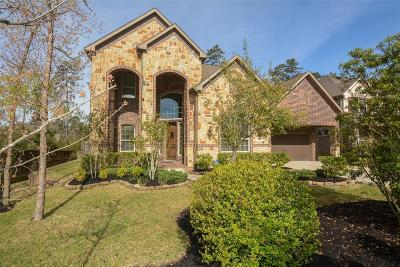 Conroe Single Family Home For Sale: 1904 Graystone Hills Drive