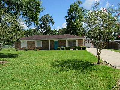 Liberty Single Family Home For Sale: 332 County Road 2093