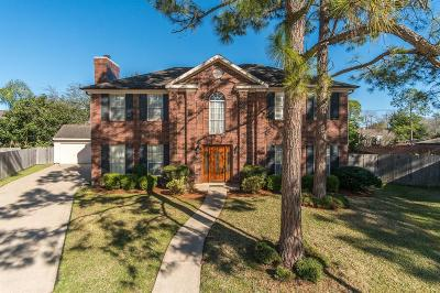 Single Family Home For Sale: 14803 Grand Nugget Court