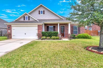 Katy Single Family Home For Sale: 25910 Celtic Terrace Drive