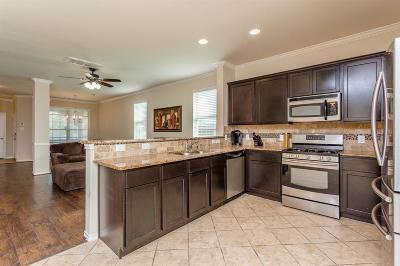 Houston Single Family Home For Sale: 10827 Brittan Leaf Lane