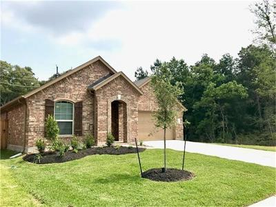 Rental For Rent: 5328 Pointe Spring Crossing Spring