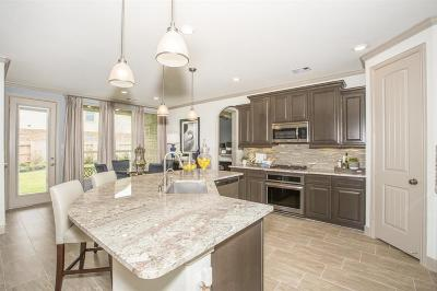 Katy Single Family Home For Sale: 1707 Dove Ridge Drive