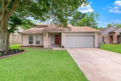 Houston Single Family Home For Sale: 10503 Autumn Meadow Lane