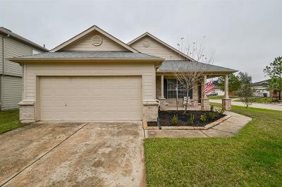 Tomball Single Family Home For Sale: 21902 Willow Shade Lane