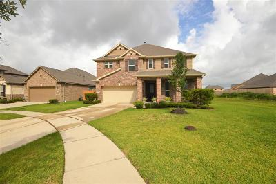 League City Single Family Home For Sale: 2833 Mezzomonte Lane