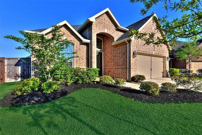 Fulshear Single Family Home For Sale: 3510 Big Hickory Court