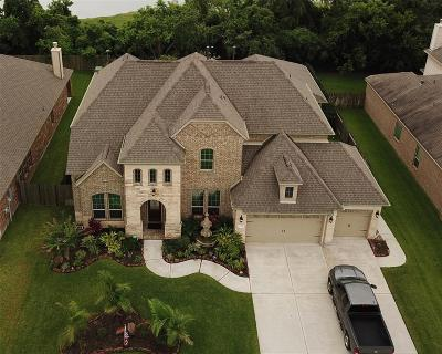 League City Single Family Home For Sale: 2950 Hawkins Creek Lane