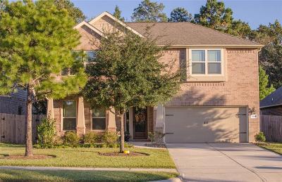 Houston Single Family Home For Sale: 13810 Slate Mountain Lane