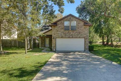 Montgomery Single Family Home For Sale: 722 Lake View Drive