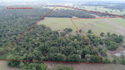 Grimes County Farm & Ranch For Sale: 79.86 Acres County Road 155
