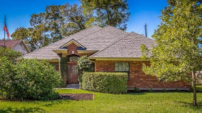Spring Single Family Home For Sale: 310 E North Hill Drive