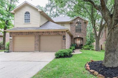 Houston Condo/Townhouse For Sale: 2912 Elm Grove Court Court