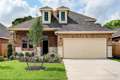 Alvin Single Family Home For Sale: 1656 Maggie Trail Drive
