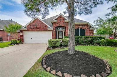 Pearland Single Family Home For Sale: 11401 Summit Bay Drive